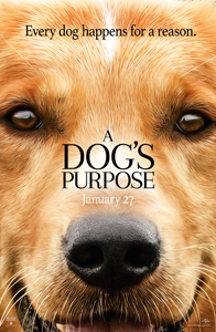 A Dog's Purpose (Blu-ray)