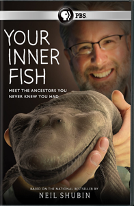 Your Inner Fish (DVD)